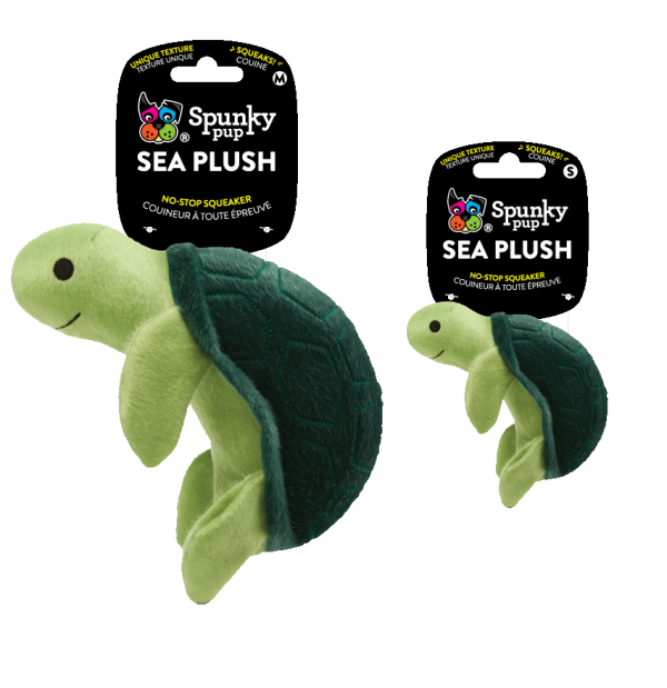 Two Turtle Sea Plush toys, one medium, one small
